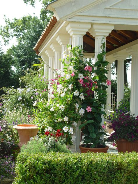 Pergola Mediterranes Flair Fuer Den Garten by Mediterrane H 228 User S 252 Dlicher Charme Inspiration Bauen De
