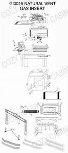 Gas Fireplace Insert  Gi3016   Gi3016  Napoleon Parts