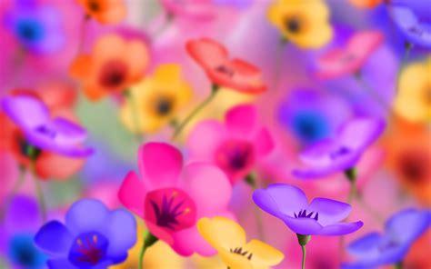 stiker warna warni colorful flowers wallpaper 215