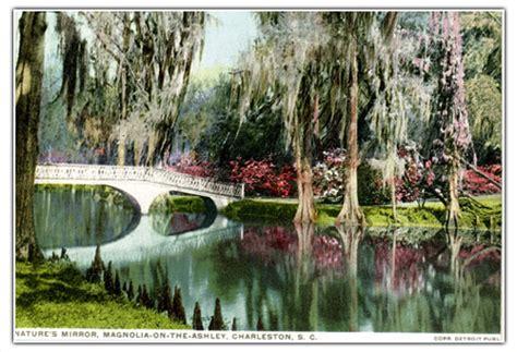 magnolia plantation and gardens history of magnolia plantation