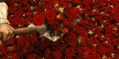 Aesthetic Murderer Royce Story Perfume Cupid Rolls