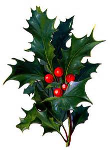 Vintage Christmas Holly Berry Clip Art