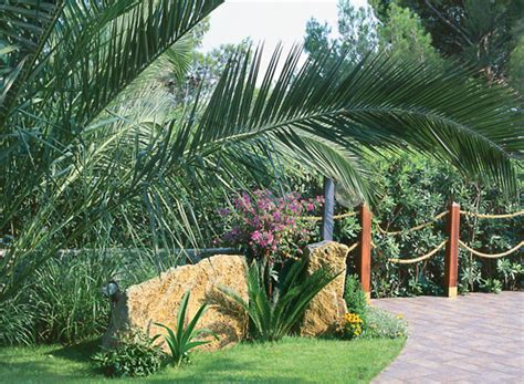giardino in discesa giardini