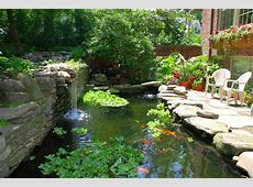 Building a Koi Pond or Garden Pond How to take care of