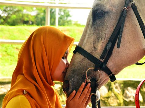 horse human riding utm relationship never complicated another being