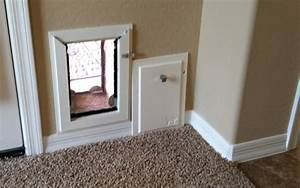 Your dog39s lifestyle made easy with wall dog door for Interior door with dog door