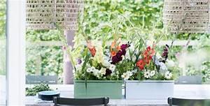 Balkon Ideen Sommer : blumenkasten bepflanzen und andere ideen f r balkon und terrasse planungswelten ~ Markanthonyermac.com Haus und Dekorationen