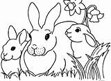 Coloring Inchworm Pages Easter Bunny Printable Getcolorings Colorings sketch template