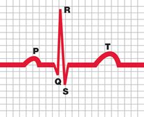 heart attack diagnosis  assessment chest heart
