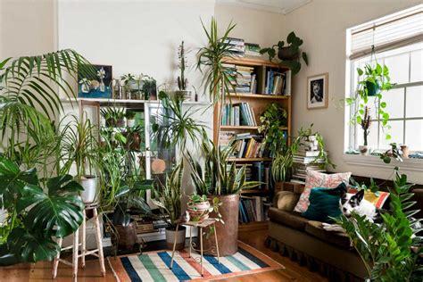 10 Excellent Ideas To Display Living Room Indoor Plants