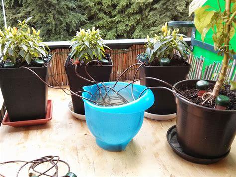 Pflanzen Während Urlaub Bewässern by 3 Stk Blumat Vandingskegle Xl Byhaver