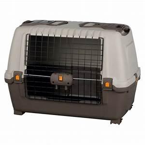 Cage Transport Chien Voiture : cage de transport pour chien en voiture skudo car ~ Medecine-chirurgie-esthetiques.com Avis de Voitures