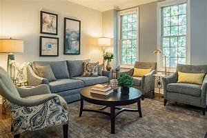 Grey, Blue and Gold - Traditional - Living Room - Chicago