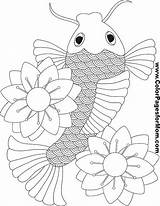 Koi Asian Coloring Fish Pages Pond Asia Adult Books Colouring Printable Sheets Print Colorpagesformom Japan Chinese Japanese Adults Oriental Mom sketch template