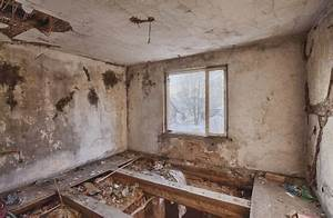 Haus Entrümpeln Kosten : ein haus sanieren die kosten im blick in 2020 haus sanieren haus renovieren und haus ~ A.2002-acura-tl-radio.info Haus und Dekorationen
