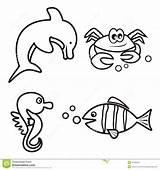 Coloring Crab Fish Seahorse Dolphin Marine sketch template