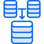 Icon Database Code Data Programmer Developer Merger