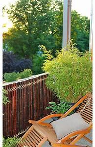 Sichtschutz Aus Bambus Selbstde