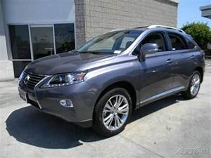Photo Image Gallery & Touchup Paint: Lexus RX in Nebula ...