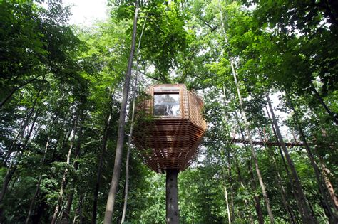 House In Tree by The Origin Treehouse Has An Amazing Interior That Will