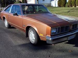 Purchase used 1978 Olds Cutlass Salon in Staten Island ...