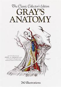 Research  Anatomy