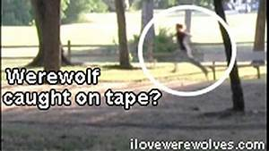 Real werewolf Sighting??!! - YouTube