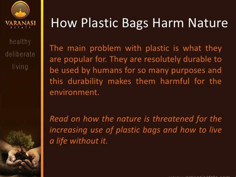 How Plastic Bags Harm Nature. Music Schools In Sacramento Isu Bengal Web. Crm And Project Management Healthy Cd4 Count. Cincinnati Prime Outlet New Home Warranty Act. Business Loan Wells Fargo Kingway Pallet Rack. What Bank Should I Open A Savings Account With. Car Title Loans Modesto Ca Email Send Service. Industrial Conveyor Systems Motif San Jose. Google Adwords Management Service