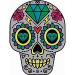 Skull Clipart Dead Sugar Flower Transparent Catrina