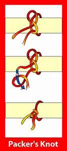 Butchers Knot Diagram
