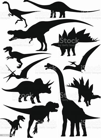 Dinosaurs Types Silhouettes Different Vector Dinosaur Isolated