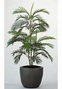 Palmen Kaufen Baumarkt : kunstpflanze arecapalme online kaufen otto ~ Orissabook.com Haus und Dekorationen