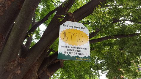 tree tag value quantify apr