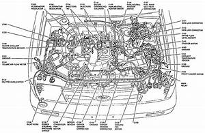 1991 Ford Festiva Wiring Diagram