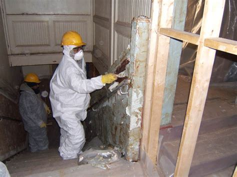 lead paint removal microtech environmental services