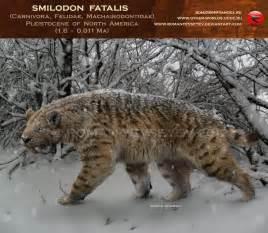 Hyaenodon vs Smilodon