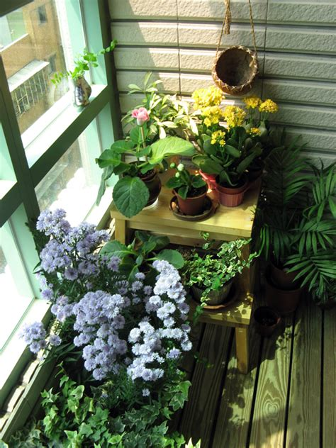 indoor balcony garden