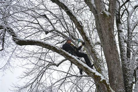 Start des ALB-Winter-Monitorings in Miesbach | TASPO.de