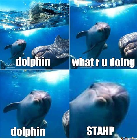 Dolphin Memes - duckface dolphin by natsuno154 meme center