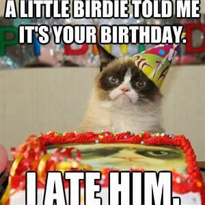 Happy Birthday Grumpy Cat | My Blog