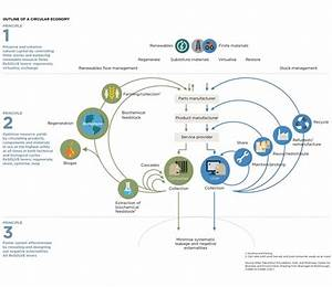 The Circular Economy  Butterflies And The Fourth