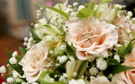 wedding bouquet  rings wallpapers  images