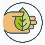 Organic Icon Usda Leaf Natural Getdrawings