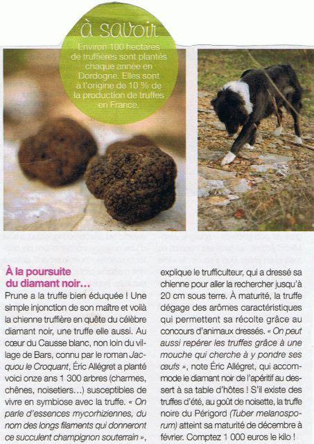 comment cuisiner les truffes noires revue de presse truffes noires truffière des mérigots 24