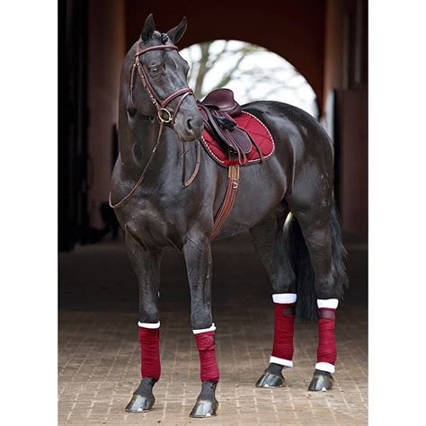 horse tack horses english dressage saddle equestrian pretty pad riding dark sets colors decked saddles burgundy pads trends go polo