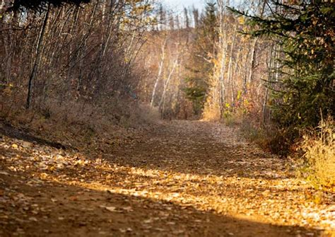 Parks and Trails Etiquette Regional Municipality of Wood