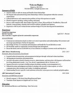 Current Resume Examples Translator Resume Example Account Manager Coordinator
