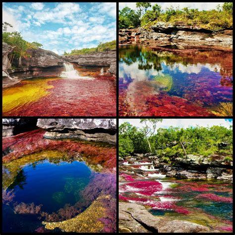 river colors river of 5 colors ca 241 o cristales river in la macarena