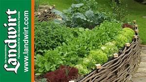 Gartenbeet Anlegen Beispiele : garten pflegeleicht gestalten youtube ~ Yasmunasinghe.com Haus und Dekorationen