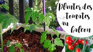 Quand Planter Les Tomates Cerises : quand planter les tomates en 2017 ~ Farleysfitness.com Idées de Décoration